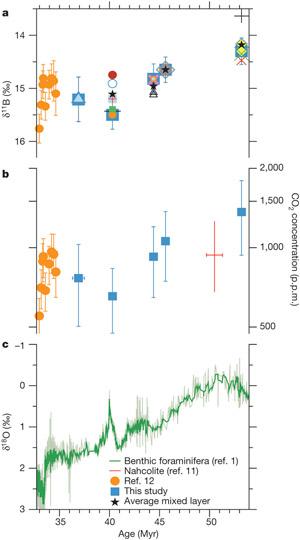 Рис. 2. а — соотношение изотопов бора в раковинках мелководных планктонных эоценовых фораминифер