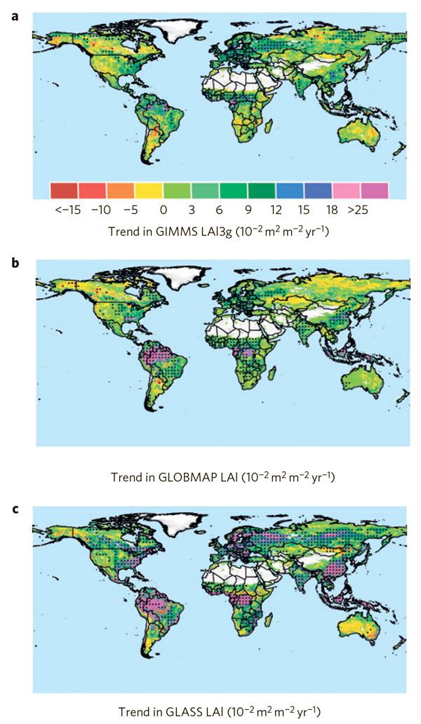 Рис. 3. Изменения индекса листового покрытия за период с 1982-го по 2009-й год