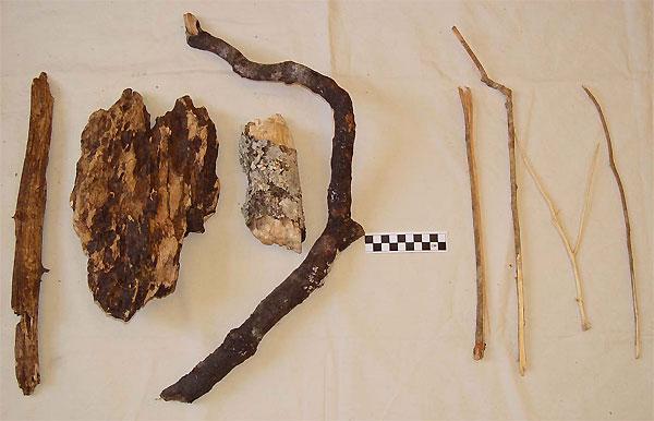 Слева— четыре деревяшки, использовавшиеся юными шимпанзе вкачестве кукол, справа— типичные зонды или «палки-ковырялки». Шкала дана в сантиметрах. Фото из дополнительных материалов к обсуждаемой статье в Current Biology