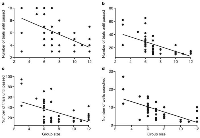 Рис. 3. Зависимость когнитивных способностей от размера группы