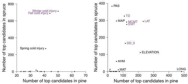 Распределение SNP по фенотипическим и средовым признакам