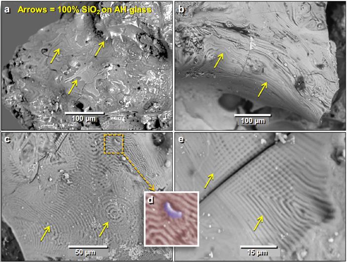 Одно из древнейших человеческих поселений сохранило следы падения кометы впозднем дриасе