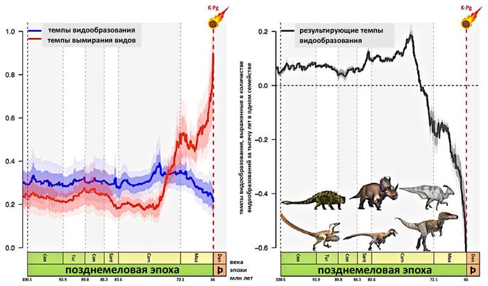 Рис. 3. Общая динамика темпов видообразования и вымирания
