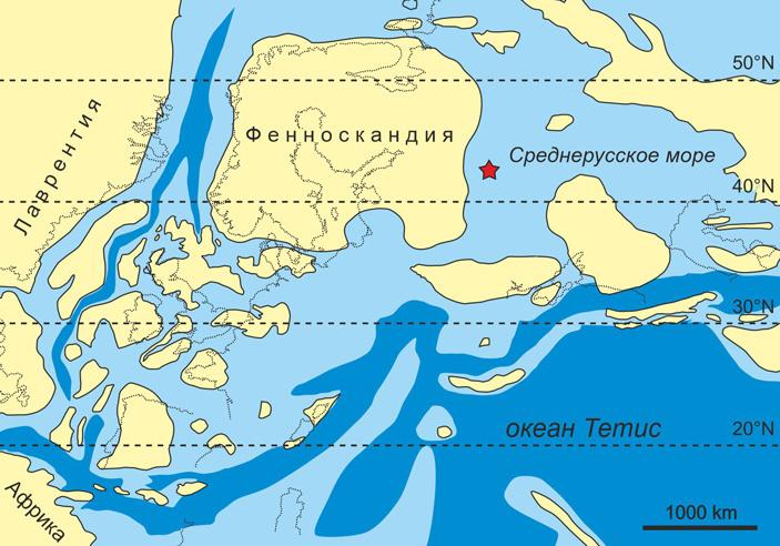 Два огромных позвонка из подмосковного карьера принадлежали юрскому завроподу сисчезнувшего субконтинента Фенноскандия