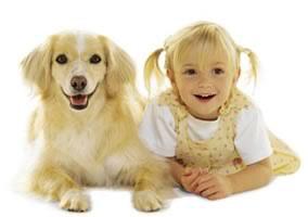 Что общего между детьми и собаками? Наша любовь к ним, считают психологи (фото с сайта www.ijhc.org)