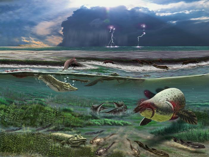 Так могла выглядеть лагуна в конце девонского периода