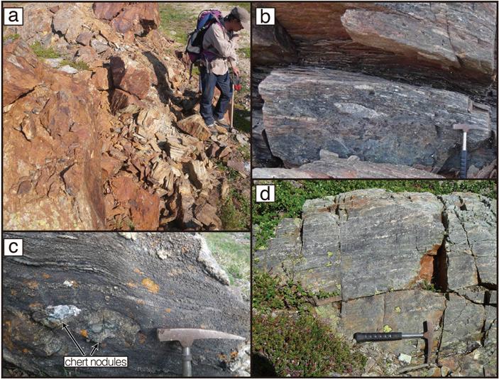 Отложения на севере Лабрадора, вкоторых найдены одни из самых древних остатков материковых пород
