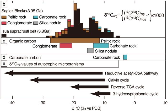 Рис. 3. Распределение изотопного состава органического углерода в разных осадочных образованиях