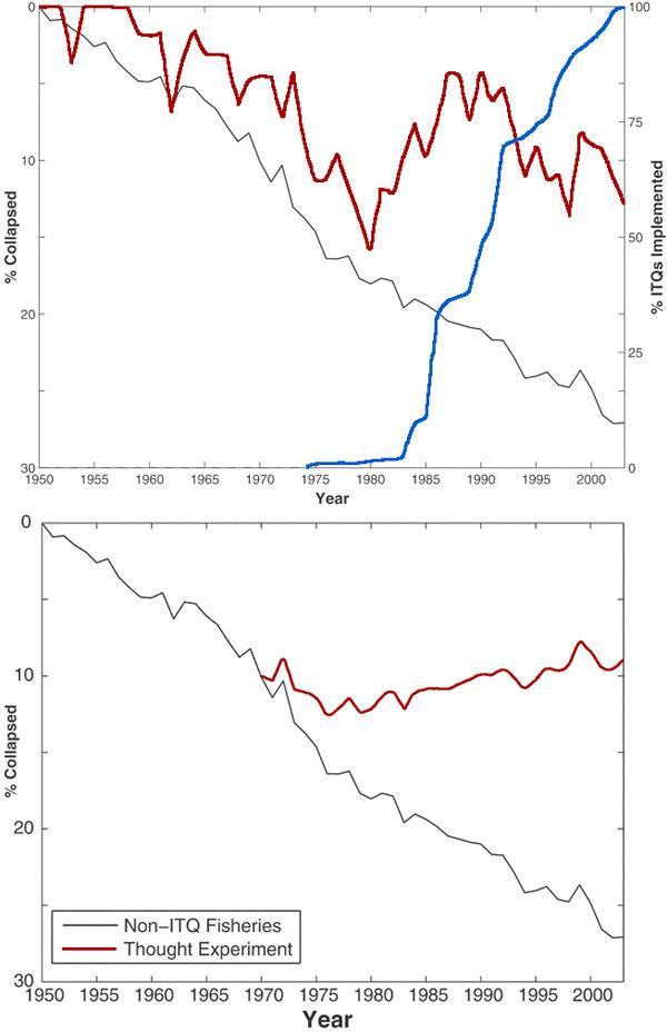 Серой линией показана доля деградировавших хозяйств, в которых уловы уменьшились до 10% и ниже от максимально зафиксированного вылова. В этих хозяйствах не практиковались разделенные квоты для промышленности и частных хозяйств. На левом графике красная линия показывает долю деградировавших хозяйств, в которых реализовывались разделенные квоты; синяя линия — число хозяйств с разделенными квотами. На правом графике красная линия показывает результаты мысленного эксперимента: что было бы, если все хозяйства применяли с 1970 года разделенные квоты. Рис. из обсуждаемой статьи в Science