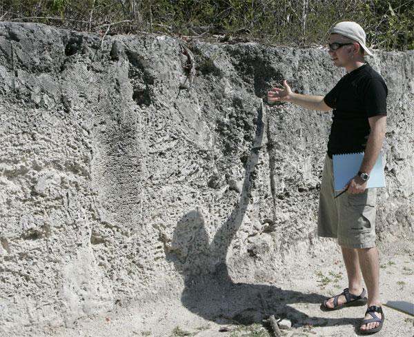 Ископаемые коралловые рифы воФлориде— каменная летопись эволюции. Там же воФлориде активно обсуждаются законодательные акты, открывающие возможности для преподавания креационизма вучебных заведениях. Возможно, законникам следует поездить посвоему штату сгеологическими экскурсиями, тогда они будут более обдуманно говорить оботсутствии доказательств теории эволюции. Фото с сайта byunews.byu.edu