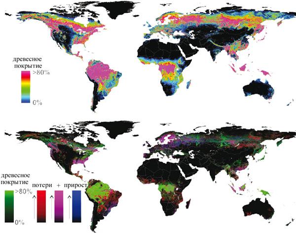 Вверху: расположение глобальных лесных массивов в различных климатических зонах— тропической, субтропической, умеренной и субарктической (бореальной). Внизу: потери за 12лет, прирост и оборот леса
