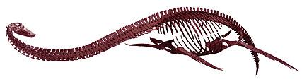 Картинки по запросу Футабазавр