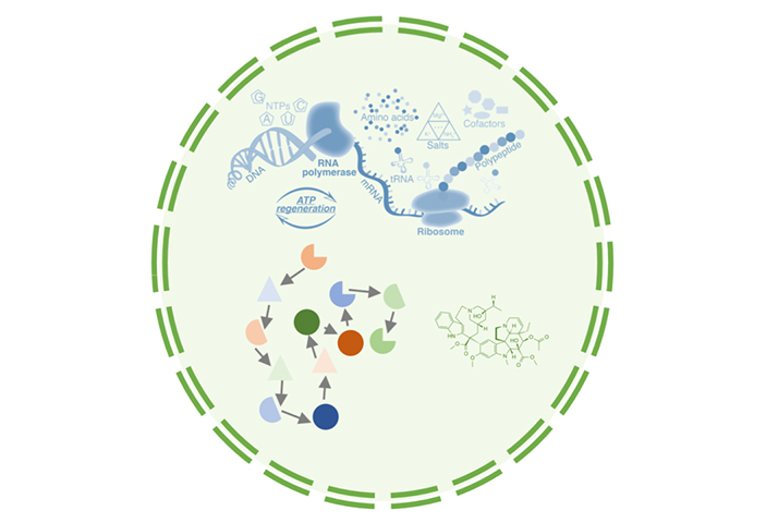 Рис.1. Искусственная клетка