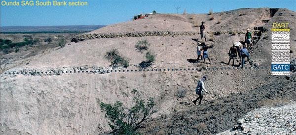 Осадочная толща, содержащая кости ардипитеков, заключена между двумя вулканическими прослоями, которые поддаются радиометрическому датированию (обозначены желтыми и синими точками). Фото из статьи White et al. Ardipithecus ramidus and the Paleobiology of Early Hominids