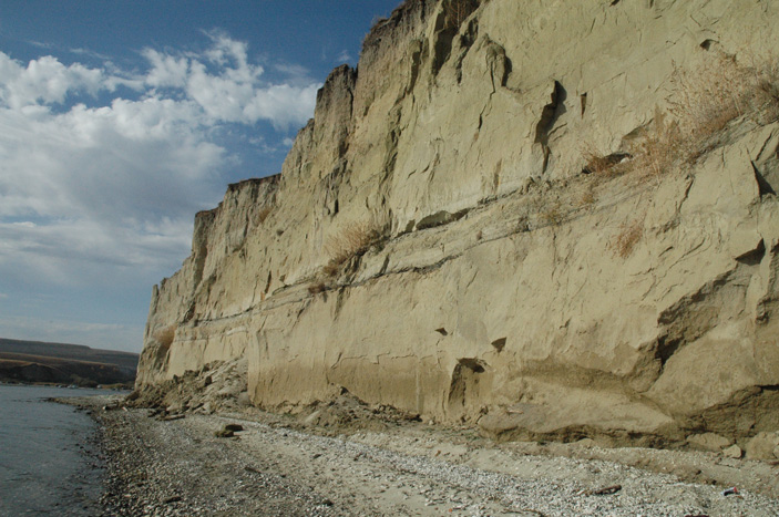 Найденный на берегу Волги позвонок удлинил время существования гигантских плиозавров