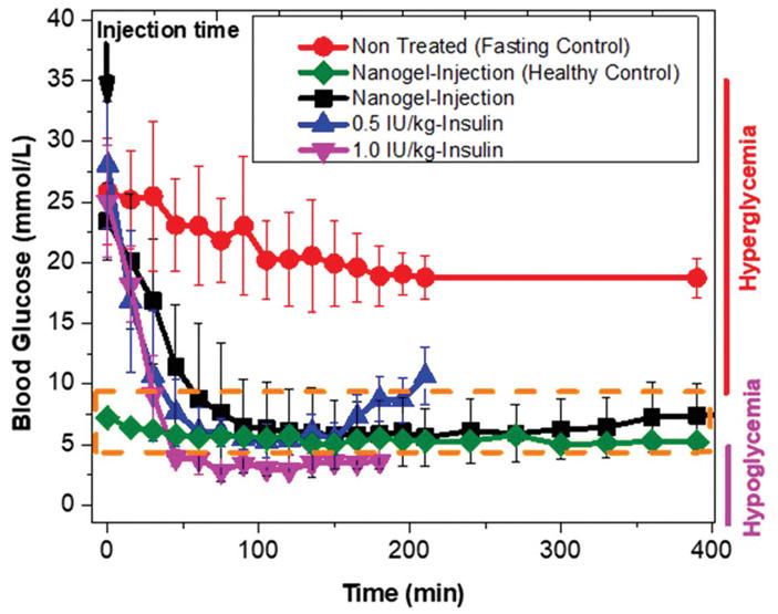 Рис. 3. Проверка эффективности чувствительного к глюкозе наногеля на крысах