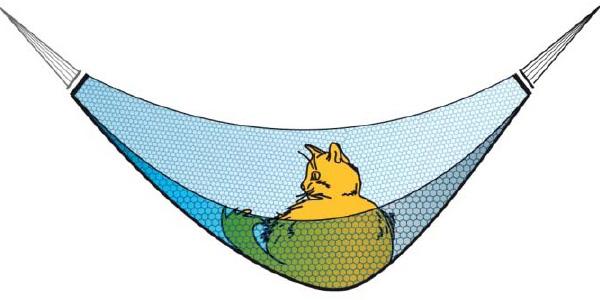Гипотетический гамак, массой в несколько миллиграмм и площадью 1 кв. м. способен выдержать весь взрослого кота, массой 4 кг.