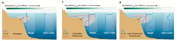 Примерно так представляется распределение в океане кислорода, двухвалентного железа и сероводорода в архее и протерозое