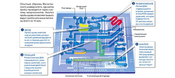 Схема лаборатории на чипе для