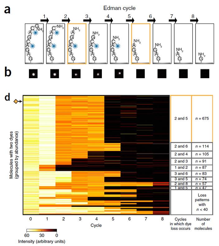 Рис. 2. Пример результатов, полученных для смеси 1695 молекул пептидов