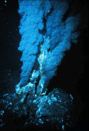 По мнению некоторых ученых, жизнь на Земле могла зародится в гидротермальных источниках. На снимке: «облако» сульфида железа поднимается над выходом горячих вод на морском дне (фото с сайта upload.wikimedia.org)