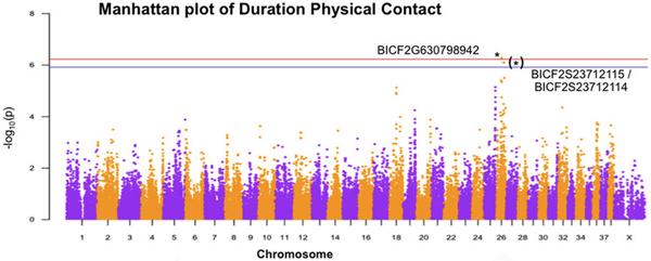 Две нуклеотидные замены на 26-й хромосоме, которые статистически значимо связаны спродолжительностью физического контакта счеловеком