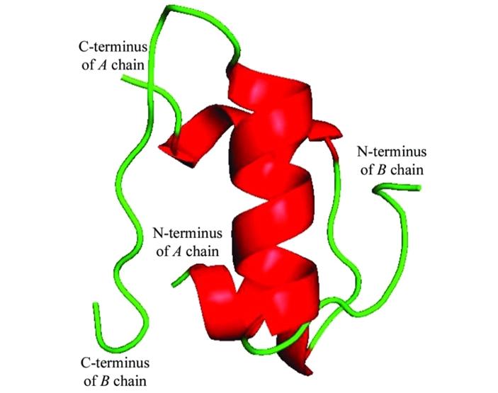 Рис.1. Модель молекулы инсулина человека, полученная спомощью рентгеноструктурного анализа