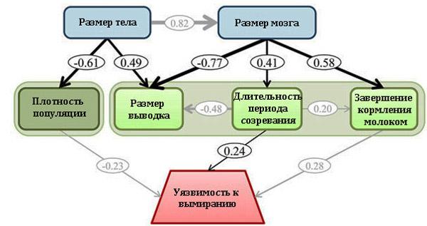 Рис. 3. Диаграмма взаимосвязей между проанализированными параметрами для лучшей модели