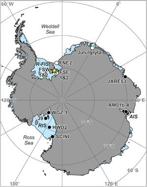 Подо льдом на антарктическом шельфе процветает жизнь