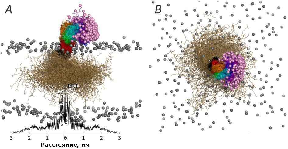 Картинки по запросу компьютерное моделирование химия