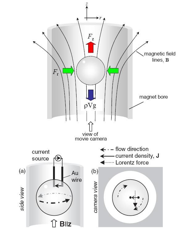 liquid_electric_motor_600.jpg