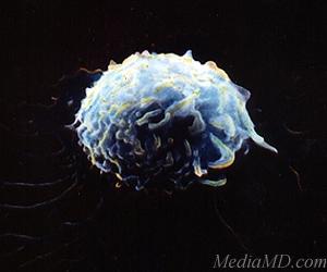 Элементы - новости науки: Мутагенез в лимфоцитах — результат ...
