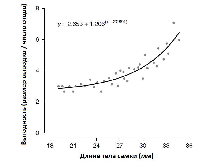 Самцы гуппи выбирают партнерш встрогом соответствии стеориями полового и родственного отбора