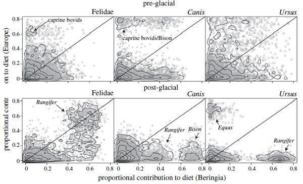 Пропорции вклада определенного вида жертв врацион хищников вБерингии (погоризонтали) и вЕвропе (повертикали)