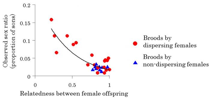 Рис. 5. Доля самцов в потомстве