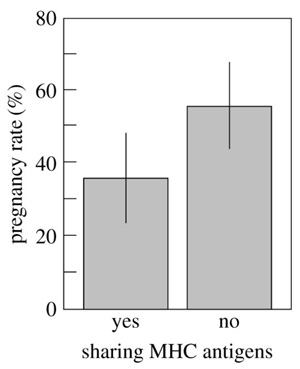 Рис. 5. Зависимость вероятности забеременеть от наличия общих генов ГКГ у кобылы и жеребца-стимула