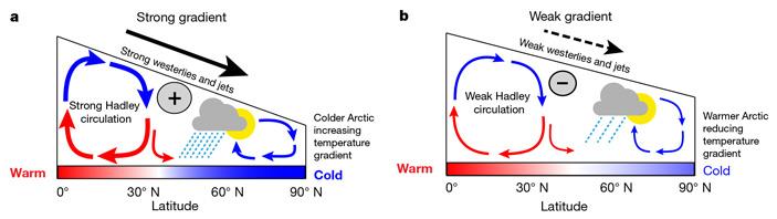 Рис. 2. Схема атмосферных циркуляций при высоком и низком широтном температурном градиенте