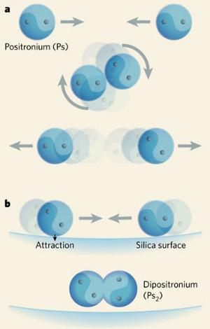 Два атома позитрония (состоящие из электрона и позитрона), столкнувшись, из-за избытка энергии вновь разлетаются, не образуя молекулы (рис.a). Поверхность кварцевой пленки поглощает лишнюю энергию, позволяя двум атомам позитрония объединиться— хоть и на мгновение (рис.b). Изображение из статьи Clifford M. Surko. Atomic physics: Awhiff of antimatter soup (Nature. V.449. P.153–155)