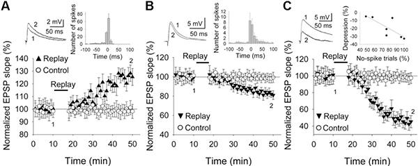 Рис. 3. Сравнение скоростей достижений пика амплитуды ВПСП клеткой слоя2/3 коры вответ на ПД от клетки слоя4 до и после имитации активности пресинаптического нейрона, соответствующей стимуляции вибриссы (replay), по сравнению с контрольным (control) взависимости от параметров стимуляции