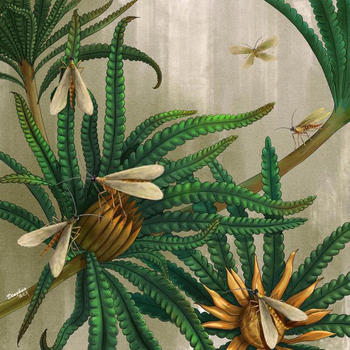 В бирманском янтаре впервые найдены бабочковидные скорпионницы схоботком