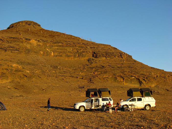 Необычайная сохранность позволила восстановить внутреннее строение эдиакарского скелетного организма из Намибии