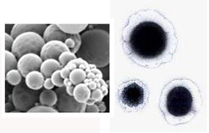 nanocell_300.jpg
