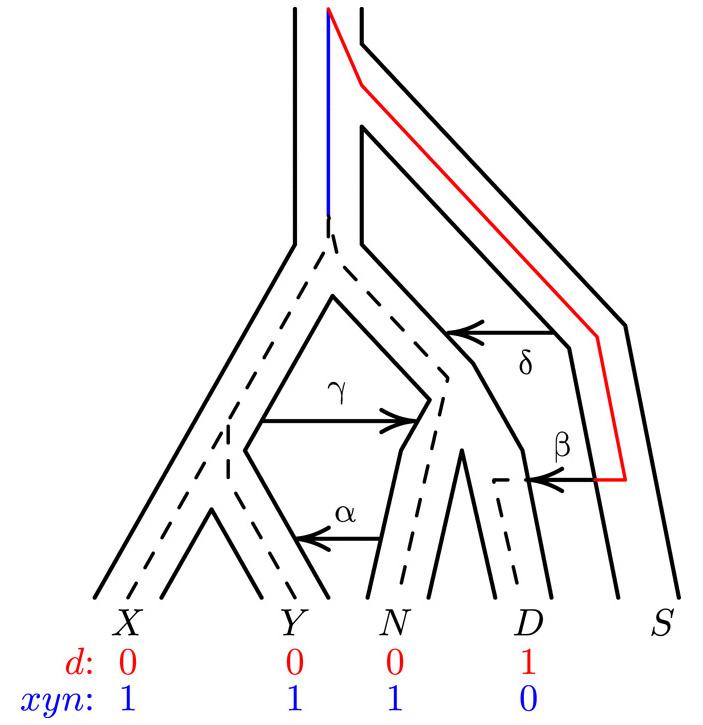 Предки неандертальцев и денисовцев скрещивались спотомками древних евразийских эректусов