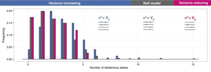 Рис. 2. Сравнение ожидаемой формы распределения числа вредных мутаций на геном в популяции