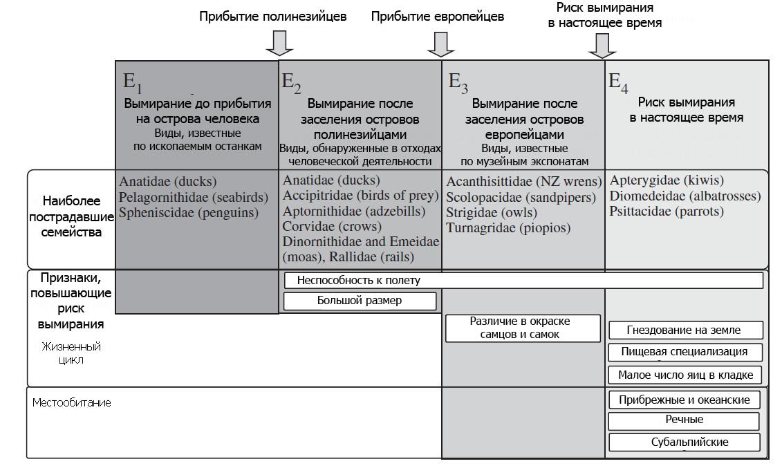 Схема, показывающая изменения