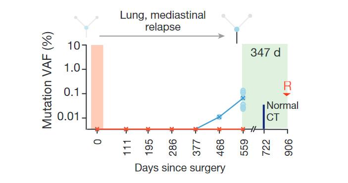 Рис. 3. Обнаружение мутантной ctDNA позволяет рано распознать рецидив рака после операции