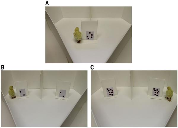 Схема первого эксперимента