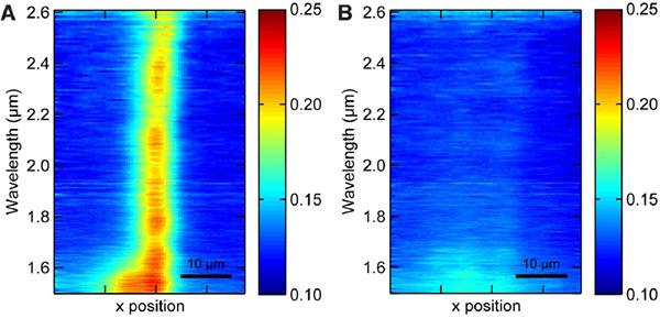 Рис.2. Пространственное распределение интенсивности отраженного от золотой пластины инфракрасного света, когда она не укрыта(A) плащом-невидимкой и когда укрыта(B). Рисунок из обсуждаемой статьи в Science