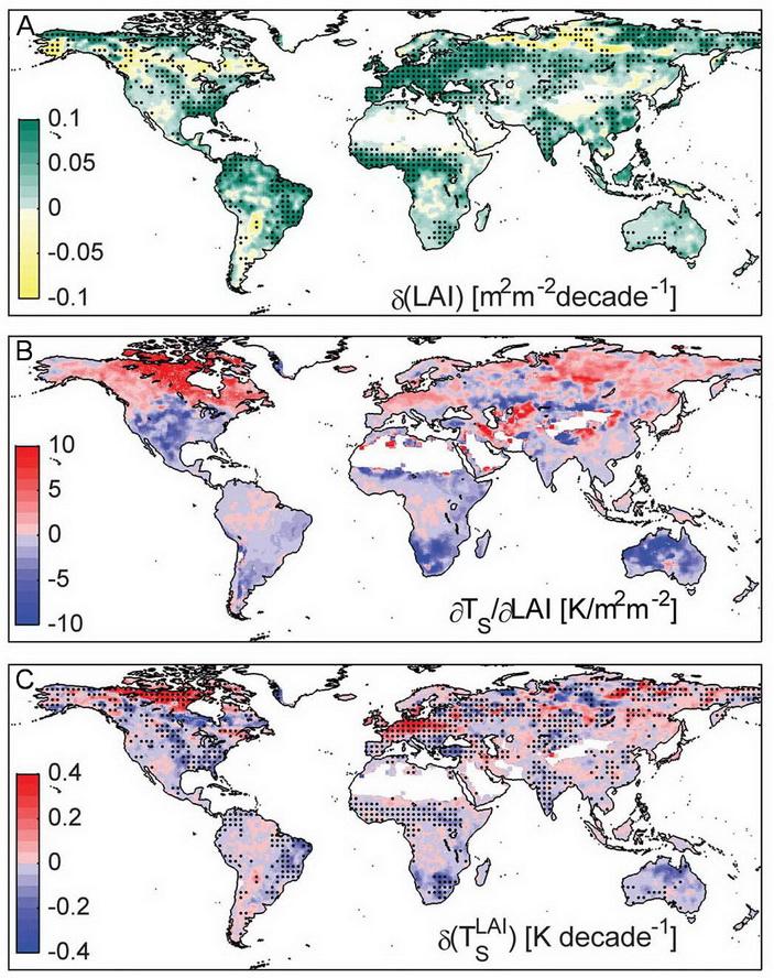 <b>Рис.2.</b> <b>А</b>— изменения виндексе площади листьев (ИЛП, на графике LAI) за 1982–2011годы