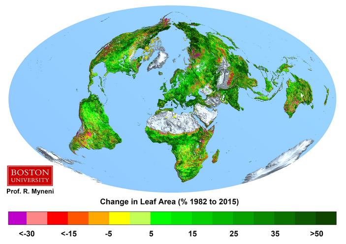 Рис.1. Изменения индекса площади листьев (ИЛП) в различных точках земного шара за 1982–2015 годы